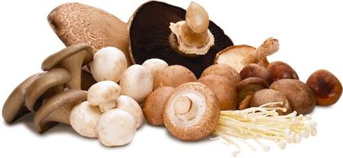 En los champiñones y setas se encuentra la trehalosa, un azúcar que también puede provocar intolerancia.