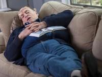 El jet lag en la microbiota intestinal contribuye al desarrollo de enfermedad
