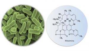 Los probióticos y la Rifaximina podrían ser útiles en el tratamiento de determinados pacientes