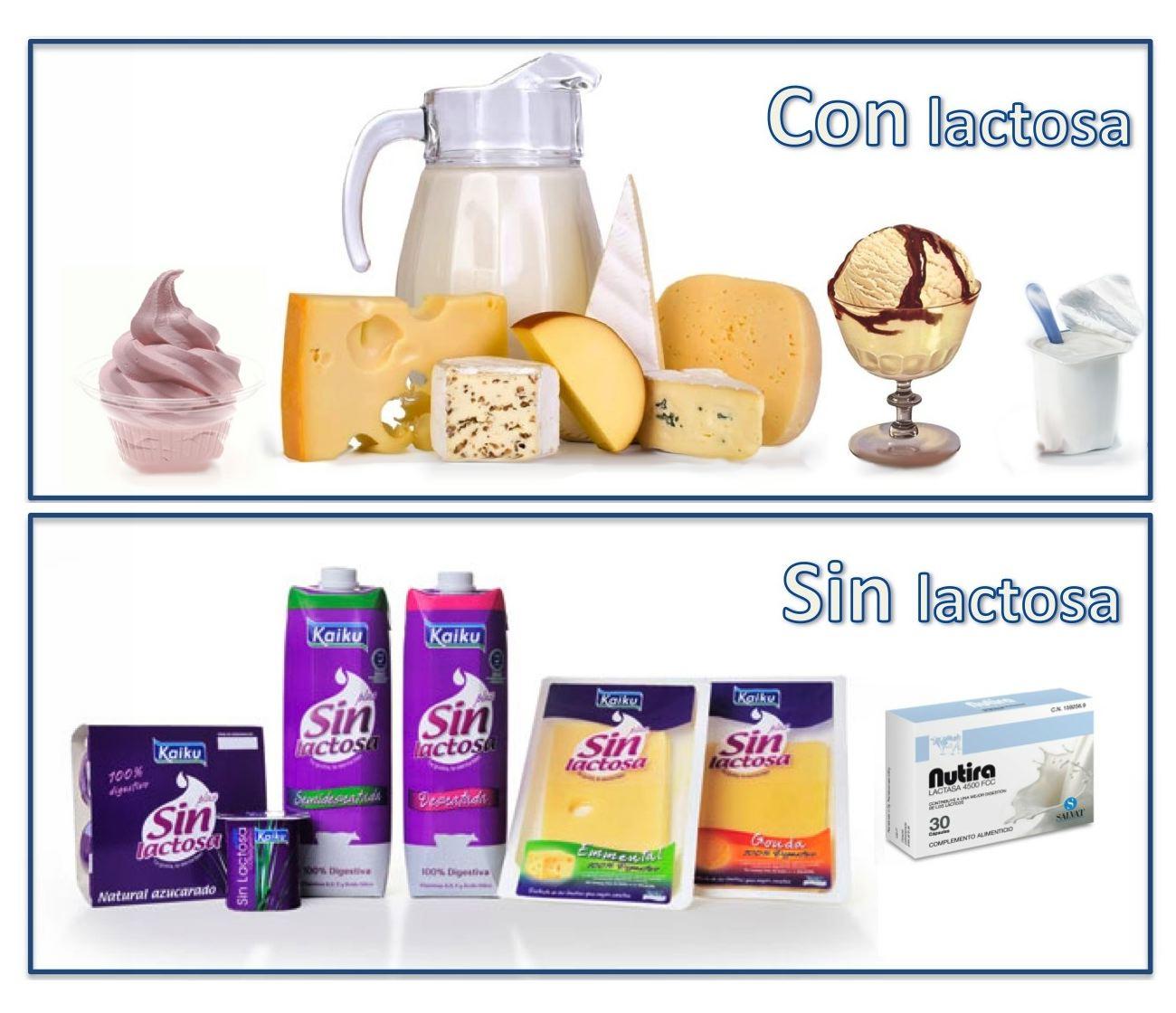 alimentos q llevan lactosa