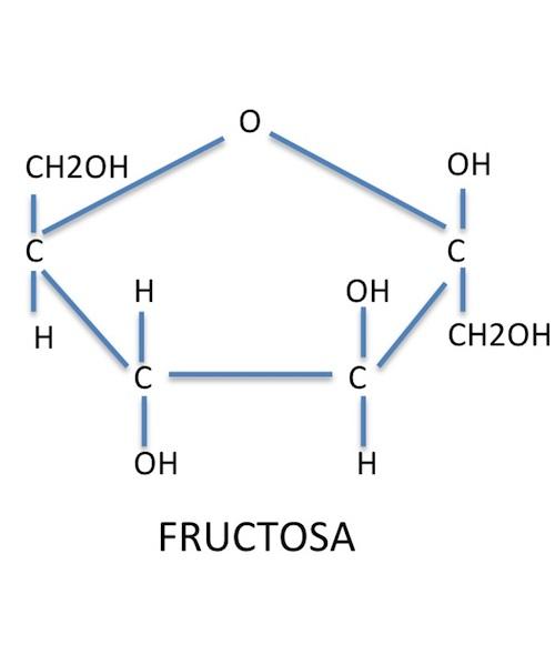 sintomas intolerancia a la fructosa en adultos
